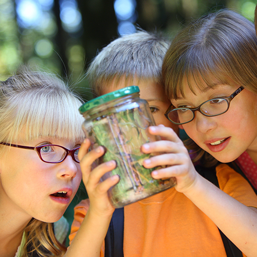 Children Observing a Jar of Bugs